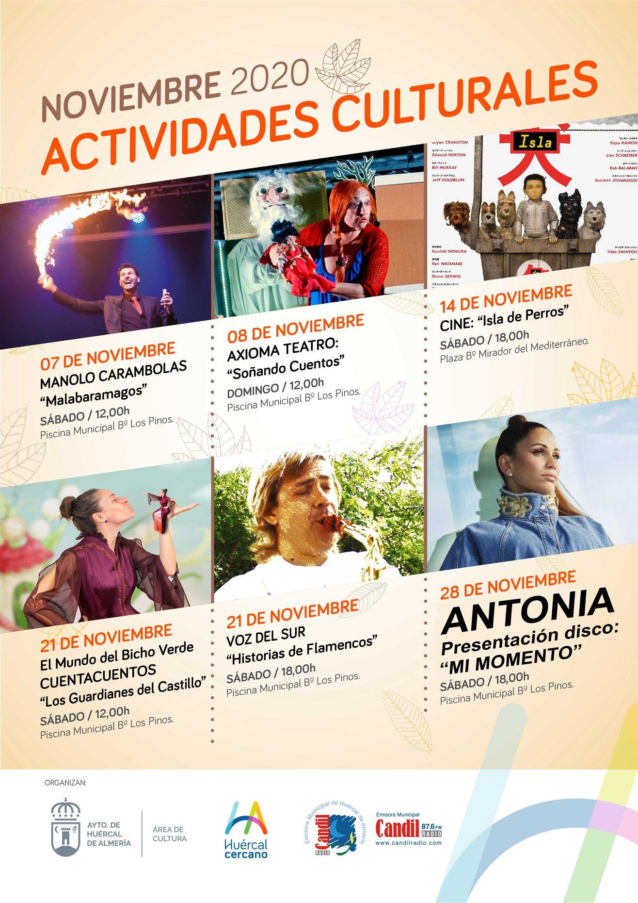 Actividades Noviembre 2020